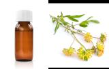 Astragalus membranaceus (AML)