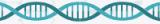 qPCR kits for BRAF mutations