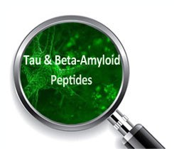 Tau & Beta Amyloid Peptides