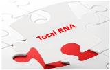 Total RNA