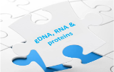 Simultaneous purification of gDNA, RNA and proteins