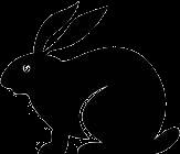 Recombinant Monoclonal Anti-V5 epitope tag [Clone SV5-P-K] Rabbit IgG kappa